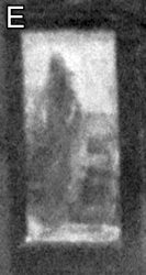 1923-e