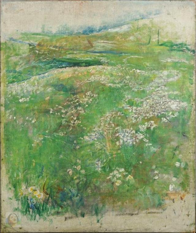 flowers-in-a-meadow-wm