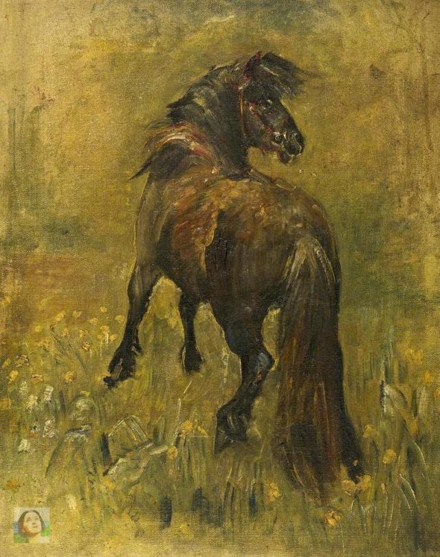 pony-WM