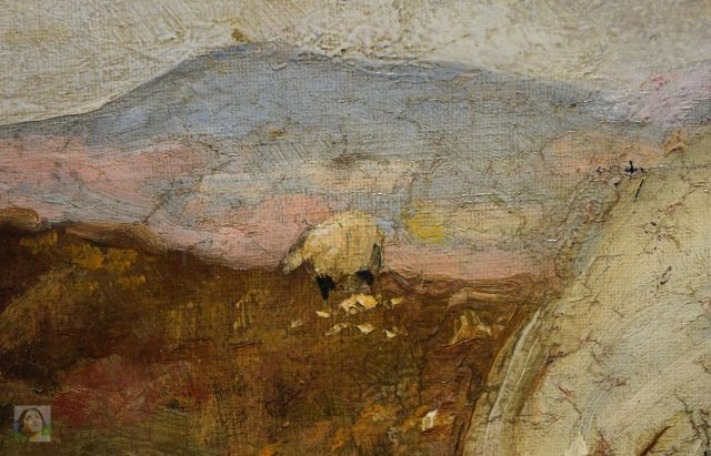 the-convalescent-detail-detail-sheep'WM
