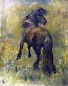 Oil Sketch of a Pony