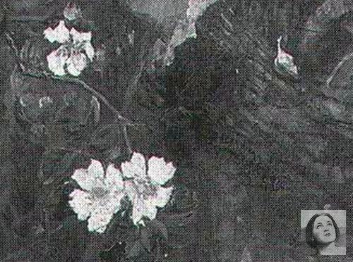 blossom-time-detail-WM