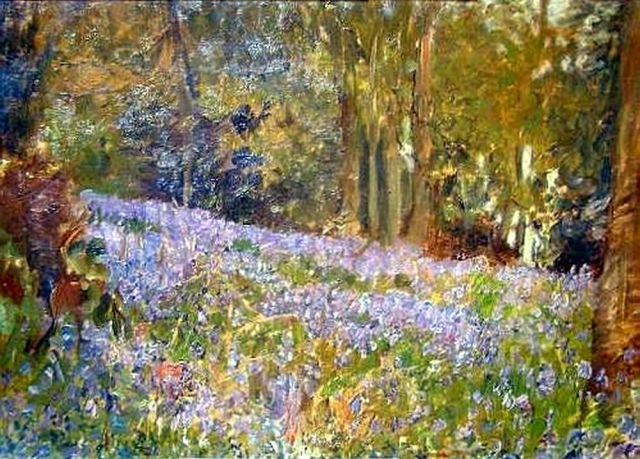 The Bluebell Wood (transformed and enhanced)