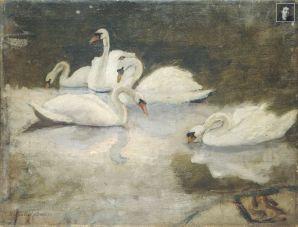 swans-WM
