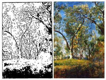 spezia-trees